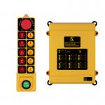 Sky 502 Radio Remote Control System
